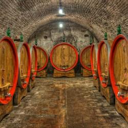 Beczki z winem w piwnicy - Nowoczesny obraz drukowany na płótnie