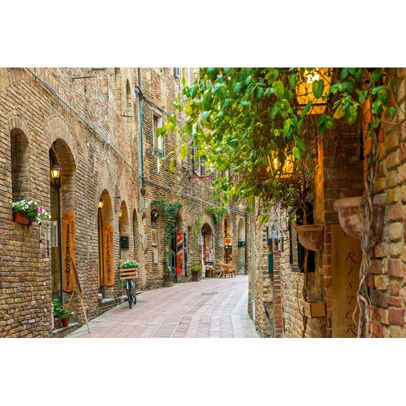 Poważnie Alejka w Toskanii - Obraz na płótnie, Nowoczesne obrazy na ścianę GB44